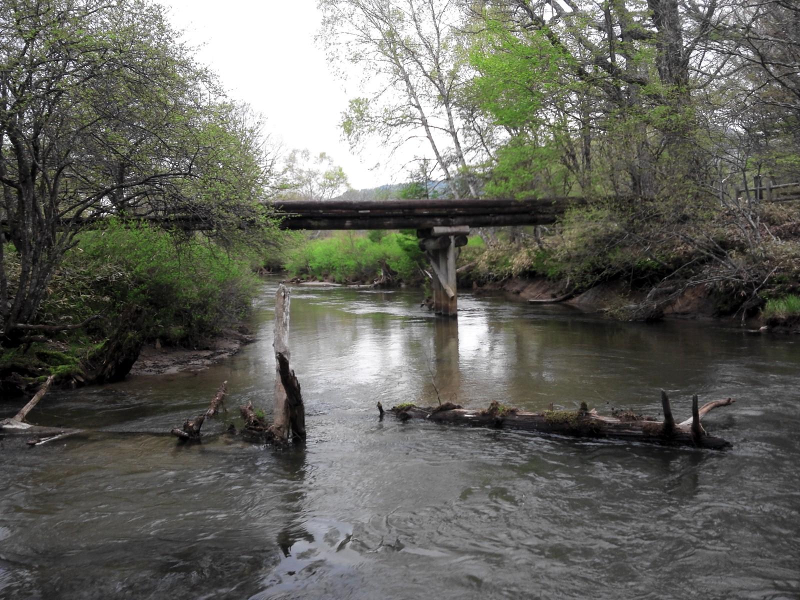 2012063午後だけの湯川