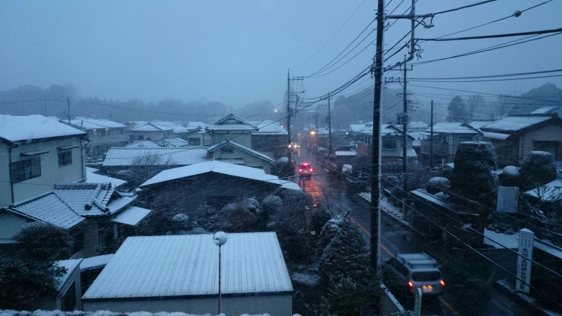 雪降りましたね