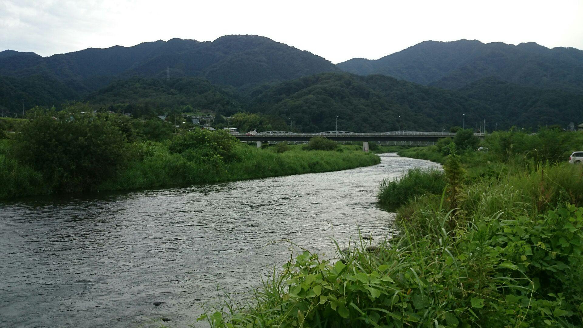 近所の川パトロール