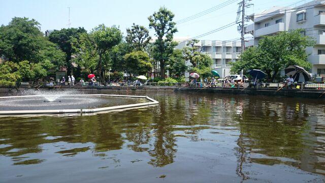 近所の清水池公園
