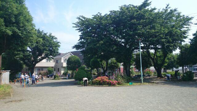 近所の公園清掃